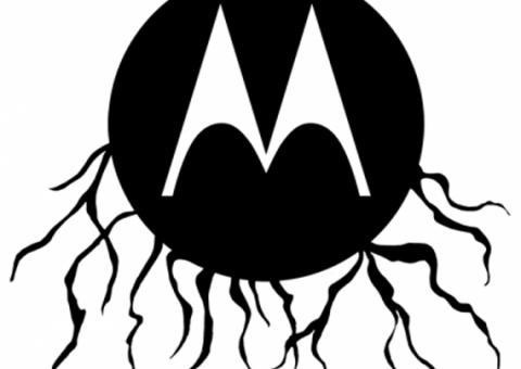 root motorola
